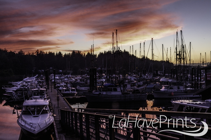 Ucluelet Sunset by Terry Humphries